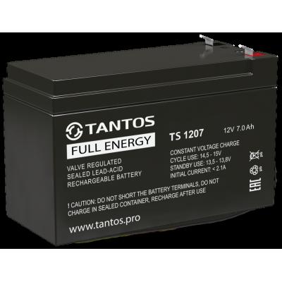 Аккумулятор 12 В 7 А∙ч (TS 1207) Tantos Аккумуляторная батарея свинцово-кислотная AGM