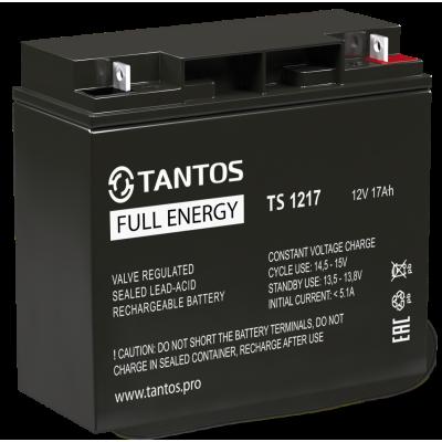 Аккумулятор 12 В 17 А∙ч (TS 1217) Tantos Аккумуляторная батарея свинцово-кислотная AGM