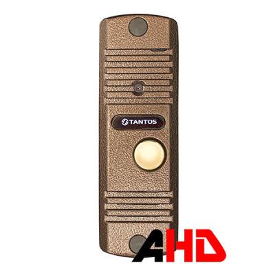 Вызывная панель цветного видеодомофона Tantos Corban HD (медь)